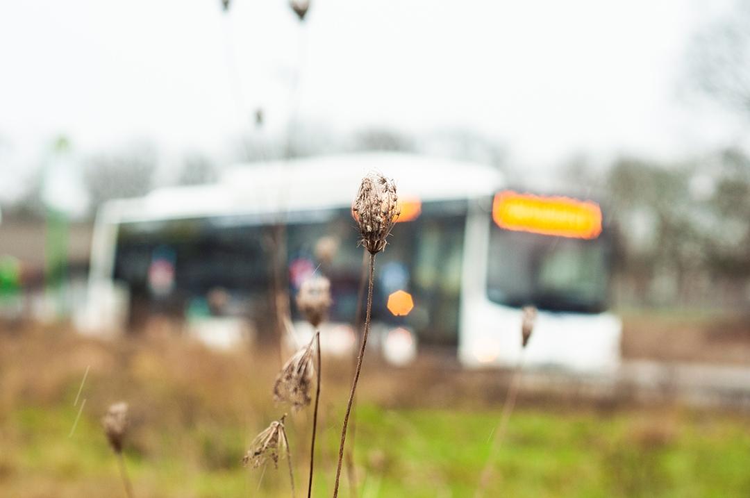 Bus in Hintergrund auf dem Gelände des alten Flughafens in Gießen